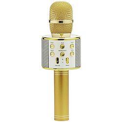 Mikrofón Karaoke Mikrofon