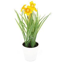 Umelá kvetina Narcis v kvetináči oranžová, 22 cm